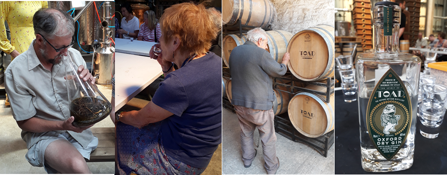 3 photos of members smelling the distilling mixture, trying the vodka, feeling the whiskey barrels. And a bottle of Oxford Dry Gin with TOAD logo (a toad in a waistcoat)